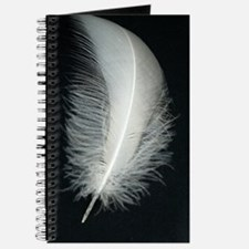 Silver Feather Journal