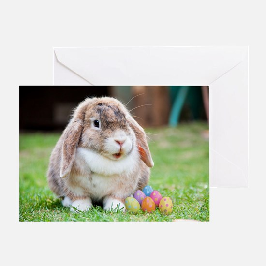 Easter Bunny Rabbit Greeting Card