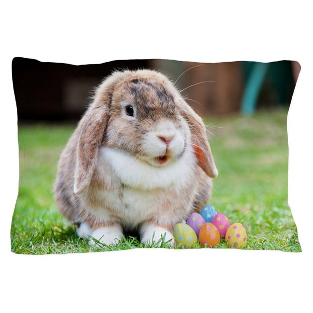 Shooting Rabbits In Colorado: Easter Bunny Rabbit Pillow Case By AllAnimalsGifts