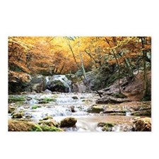 Autumn Stream Postcards (Package of 8)