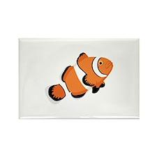 Clown Fish Magnets
