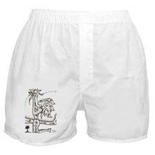 Hold the Sun Boxer Shorts