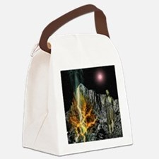 Moses And The Burning Bush Canvas Lunch Bag