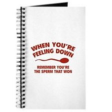 When You're Feeling Down Journal