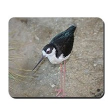 Black-necked Stilt Bird Mousepad