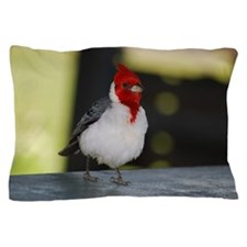 Red Crested Cardinal Pillow Case