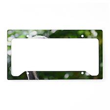 Crane License Plate Holder