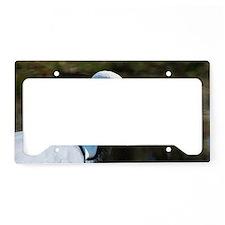 White Naped Crane License Plate Holder