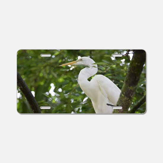 White Egret Bird in a Tree Aluminum License Plate