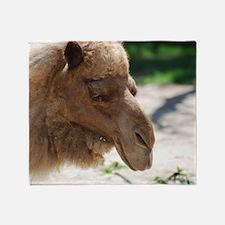 Arabian Camel Throw Blanket