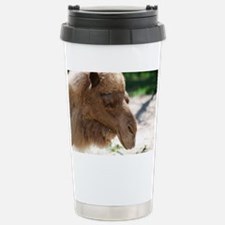 Arabian Camel Travel Mug