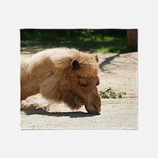 Resting Camel Throw Blanket