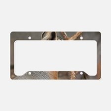Capybara License Plate Holder