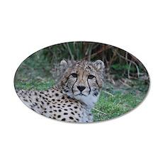 Sleepy Cheetah Cat 35x21 Oval Wall Decal