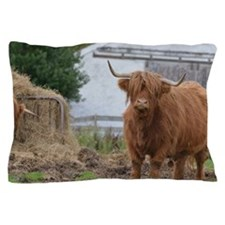 Highland Cow with Hay Pillow Case