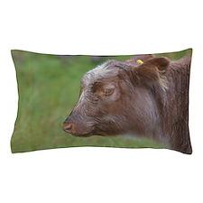 Highland Calf Pillow Case