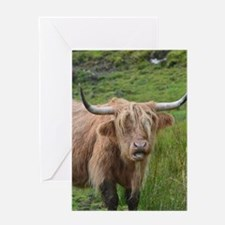 Highland Cow Chewing Greeting Card