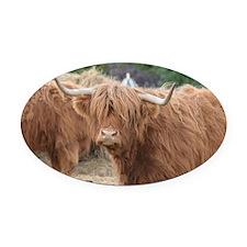 Cute Highland Cow Oval Car Magnet