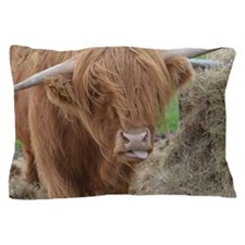 Highland Cow Sticking Out His Tongue Pillow Case