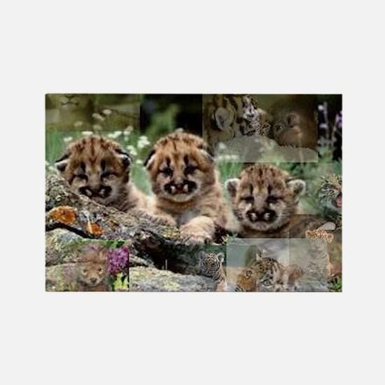Cougar Cubs Rectangle Magnet