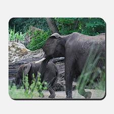 Elephant with a Calf Mousepad