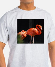 Briliant Flamingo T-Shirt