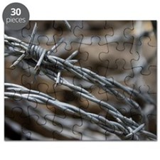 Barbed Wire Puzzle