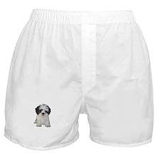 Shih Tzu (bw) pup Boxer Shorts