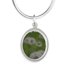 Make a Wish Silver Oval Necklace