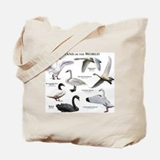 Swans of the World Tote Bag