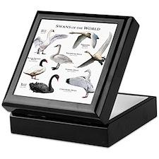 Swans of the World Keepsake Box