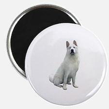 White Akita Magnet
