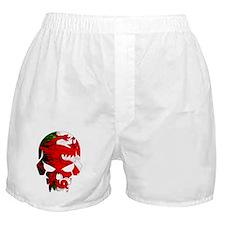 Welsh Flag Skull Boxer Shorts