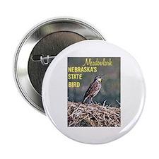 Meadowlark Bird Button