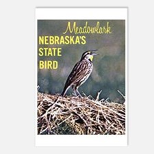 Meadowlark Bird Postcards (Package of 8)