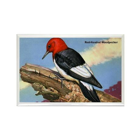 Red-Headed Woodpecker Bird Rectangle Magnet