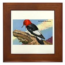 Red-Headed Woodpecker Bird Framed Tile