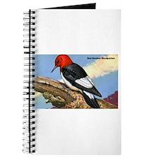 Red-Headed Woodpecker Bird Journal