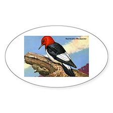 Red-Headed Woodpecker Bird Oval Decal
