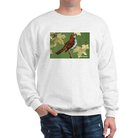 Wood Thrush Bird Sweatshirt