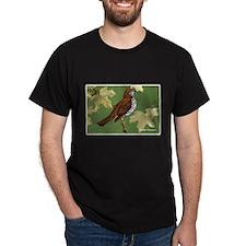 Wood Thrush Bird (Front) T-Shirt