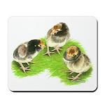 Brown Brabanter Chicks Mousepad
