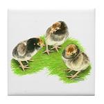Brown Brabanter Chicks Tile Coaster