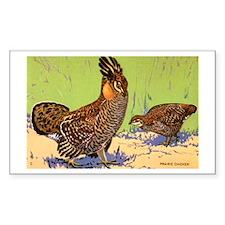 Prairie Chicken Bird Rectangle Decal