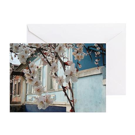 Cherry Blossoms - Spring In Ukraine (Pk of 10