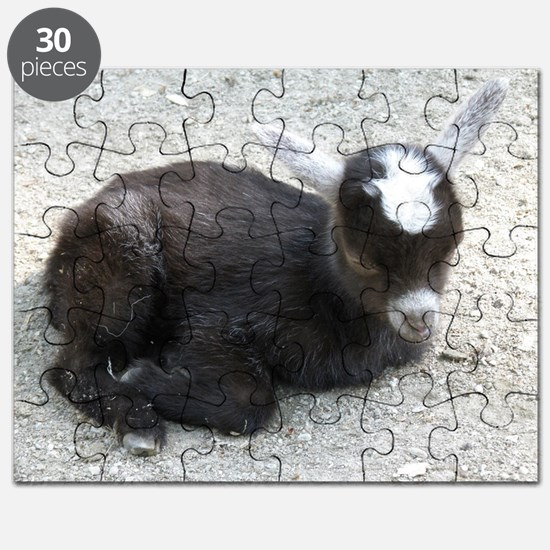 Curled Up Baby Goat Puzzle