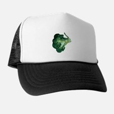 superfood hat