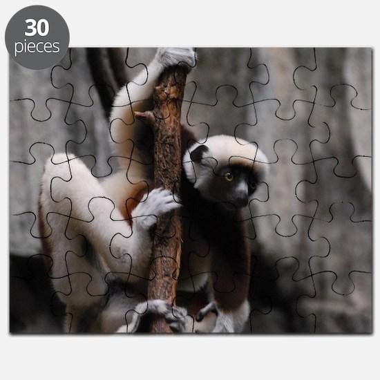Climbing Safika Lemur Puzzle