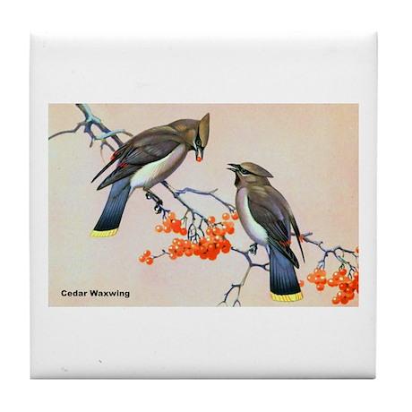 Cedar Waxwing Bird Tile Coaster