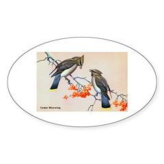 Cedar Waxwing Bird Oval Decal